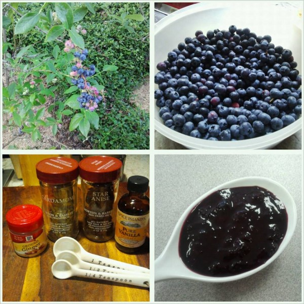 Spiced Blueberry Sauce-The Prize of Cooking